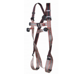 Pioneer 2 Point Harness - 01FAR0203
